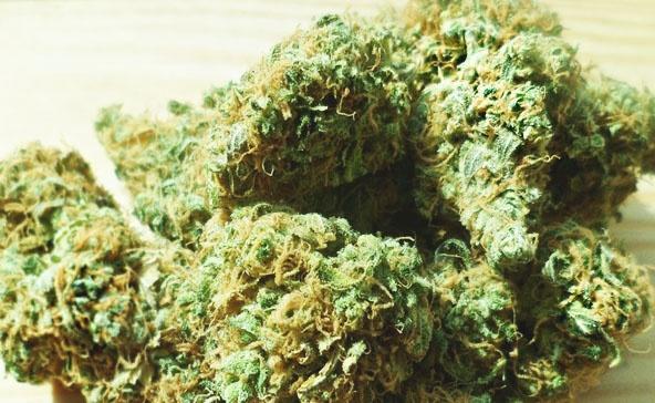 Guide For Starting A Marijuana Grow Operation - marijuana product.jpg