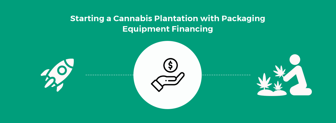 Starting a Cannabis Plantation with Packaging Equipment Financing